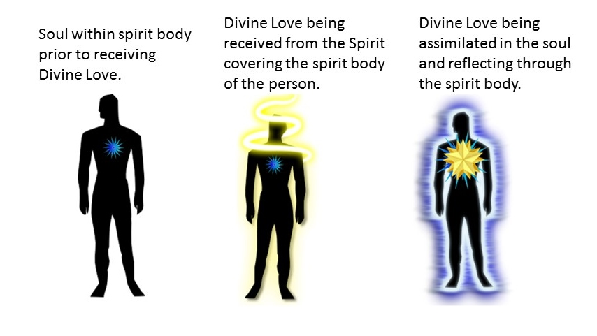 From human to divine as a result of Divine Love